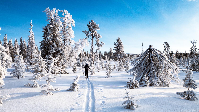 Turskidor – gå på tur på vintern med rätt utrustning!