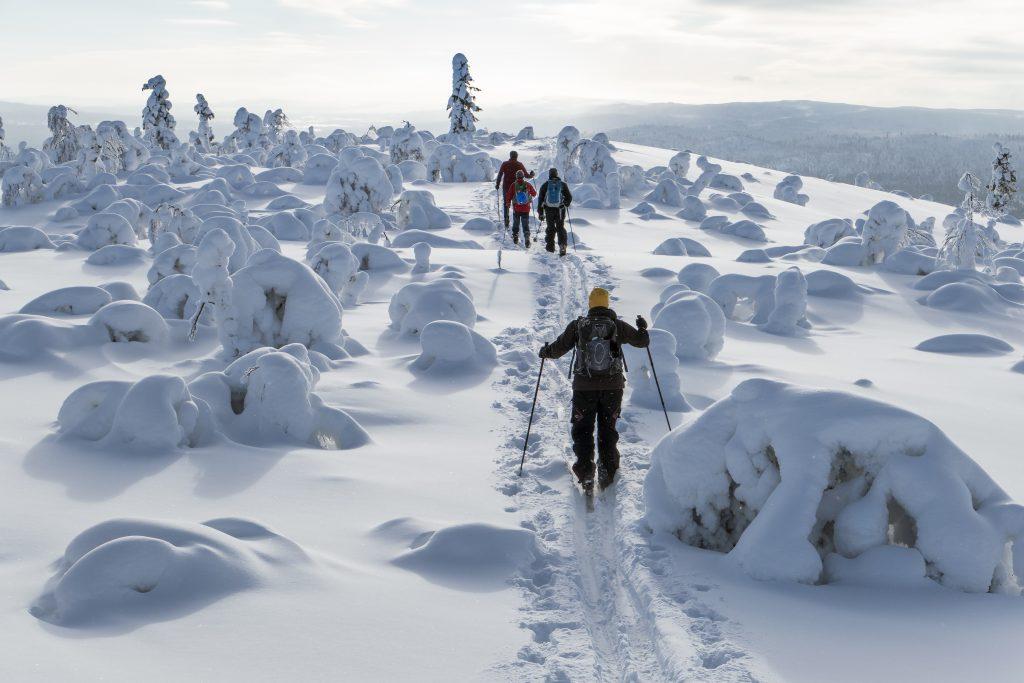 Magisk vintertur på skidor